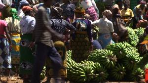public-banana-still