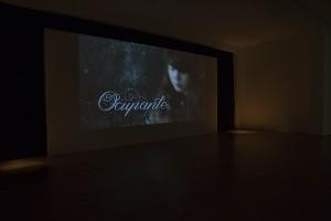 grimanesa_amoros_Ocupante_Videos_02
